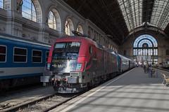 Taurus 470 503 Budapest Keleti (daveymills37886) Tags: taurus 470 503 budapest keleti baureihe class siemens es64u2 gysev