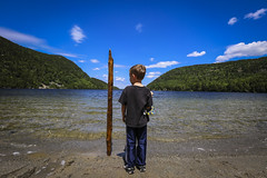 The Trick He Does. Long Pond, Acadia National Park, Maine (rocinante11) Tags: water lake acadia acadianationalpark nationalpark longpond blue driftwood canoneos5dmarkiii ef1635mmf28liiusm
