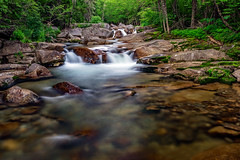 Early Morning at Jefferson Notch (Dave Trono) Tags: 2018 ammonoosucriver canon canon5dmarkiv canonef2470mmf28liiusm crawfords crawfordspurchase davetrono jeffersonnotch jeffersonnotchroad mtjefferson mtwashington nh nationalforest newengland newhampshire whitemountainnationalforest whitemountains cascade geotagged landscape moss mountain river stream summer trees unitedstates us waterfall rock forest