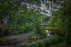Peaceful summer path. (donnieking1811) Tags: indiana landscape outdoors stream brook path pond lake trees flowers rocks stones bridge hdr canon 60d lightroom photomatixpro aberdeen