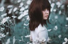 walking the fields (Natsumi °•¤) Tags: rei bimong dandelion dollstown bjd