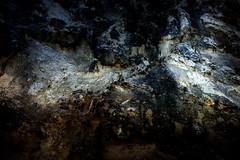 18-199 (lechecce) Tags: 2018 abstract nature flickraward