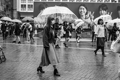 One Step At A Time (burnt dirt) Tags: asian japan tokyo shibuya station streetphotography documentary candid portrait fujifilm xt1 bw blackandwhite laugh smile cute sexy latina young girl woman japanese korean thai dress skirt shorts jeans jacket leather pants boots heels stilettos bra stockings tights yogapants leggings couple lovers friends longhair shorthair ponytail cellphone glasses sunglasses blonde brunette redhead tattoo model train bus busstation metro city town downtown sidewalk pretty beautiful selfie fashion pregnant sweater people person costume cosplay boobs rain wet umbrella
