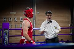 30777 - Referee (Diego Rosato) Tags: boxe boxing pugilato boxelatina ring match incontro rawtherapee nikon d700 2470mm tamron referee arbitro