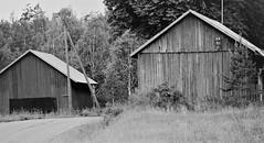 IMG_0233 (www.ilkkajukarainen.fi) Tags: barn lato suomi eu europa scandinavia finland maaseutu coutry side kylä fagervik uusimaa blackandwhite mustavalkoinen monochrome wood house rakennus ulko