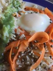 A Non-Traditional #Breakfast - v (SouthernBreeze) Tags: 2018 food cooking sooc hemp cannabis marijuana seeds breakfast protein health healing reseaerch science carrots color light green white egg rice jasmine recipe friends kitchen orange i6 iphoneography sativa thc cbd research medicine healthcare healthy