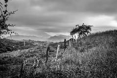 Paisaje nublado (ccc.39) Tags: asturias oviedo paisaje blancoynegro blackandwhite landscape bn bw monochrome cloudy nublado