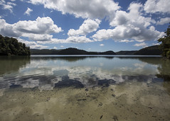 Waikareiti Clearing (fantommst) Tags: lisaridings fantommst lake waikaremoana nz newzealand teurewera north island waikareiti national park clear water landscape clouds reflection hawkesbay