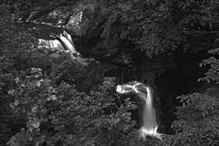 "fine art black & white view of the falls on the River Braanin well past Ossian Hall, The Hermitage Pleasure Ground, Dunkeld, Perth & Kinross, Scotland (grumpybaldprof) Tags: bw blackwhite ""blackwhite"" ""blackandwhite"" noireetblanc monochrome ""fineart"" ethereal striking artistic interpretation impressionist stylistic style ""wideangle"" ultrawide ""longexposure"" ""neutraldensity"" nd ""perthandkinross"" pitlochry"" atholl"" ""robertburns"" ""dukeofatholl"" scotland uk ""thehermitage"" ""thehermitagepleasureground"" ""nationaltrustforscotland"" nts dunkeld ""riverbraanin"" ""craigvineanforest"" ossian ""dunkeldhouse"" ""ossian'shallofmirrors"" folly follies gorge glen river falls waterfalls ""ossian'scave"" hermit ""hermit'scave"" ""douglasfir"" 1760 1750s ""blacklinnfalls"" ""grumblingbridge"" bridges forest wood walks paths ""cedaroflebanon"" bard riverside canon 7d ""canon7d"" sigma 1020 1020mm f456 ""sigma1020mmf456dchsm"""