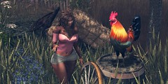 """Strawberry Lake Photo contest 2018 """"A Kind of Magic"""" (MetteKenzo Nagy 