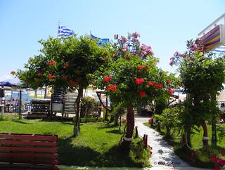 Olympic Beach, Greece