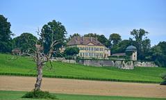Château de Vuillerens (Diegojack) Tags: colombier vaud suisse d7200 nikon nikonpassion campagne monuments château vuillerens groupenuagesetciel