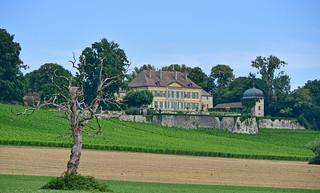 Château de Vuillerens