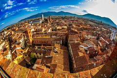 Lucca (Arutemu) Tags: lucca toscana italy it eu europe european italia italian italien city cityscape canon ciudad canon6d eos6d sigma 15mm sigma15 fisheye town townscape urban view ville vista wideangle birdseyeview medieval renaissance tuscany tuscan light landscape scene scenic streets イタリア ルッか ルッか市 トスカナ トスカーナ州 都市 都市景観 都市の景観 都市の全景 街 街並み 町 風景 景色 景観 光景 全景 観光 展望台 見晴らし ヨーロッパ 魚眼