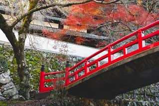 Red bridge in autumn, Osaka Japan