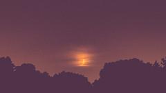 Croissant Set (Dimi Sahn) Tags: crescent moon night trees clouds stars