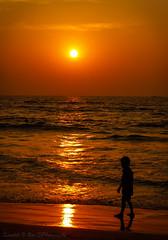Dusk !! The day's most jubilant moment.. (Kaushik.N.Rao) Tags: goldenhour sunset dusk seashore beach silhouette evening colors red nature horizon landscape moments beautiful udupi malpe karnataka canon dslr photography lightroom flickr radiance india iamk9 2k18 light travel