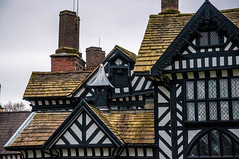 Lines (Tony Shertila) Tags: spekegarstonward england unitedkingdom gbr europe britain merseyside liverpool nationaltrust building estate mamor tudor architecture roof chimney slate window