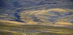 Landscape, Tibet 2017 (reurinkjan) Tags: tibetབོད བོད་ལྗོངས། 2017 ༢༠༡༧་ ©janreurink tibetanplateauབོད་མཐོ་སྒང་bötogang tibetautonomousregion tar sagaས་དགའ་county nomadicareaའབྲོག་པའི་སbrogpaisa nomadslivinggrazingplaceགཟས་སzesa nomadsའབྲོག་པ།brogpadrokpa tibetanlandscapepicture landscapeཡུལ་ལྗོངས།yulljongsyünjong landscapesceneryརི་ཆུ་ཡུལ་ལྗོངསrichuyulljongsrichuyünjong landscapepictureཡུལ་ལྗོངས་རི་མོyulljongsrimoyünjongrimo natureརང་བྱུང་ཁམས་rangbyungrangjung natureofphenomenaཆོས་ཀྱི་དབྱིངས་choskyidbyings earthandwaternaturalenvironmentས་ཆུ་sachu