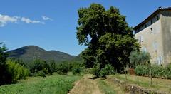 Chemin vers Mialet (gunger30) Tags: mialet gard cévennes languedocroussillon occitanie france 2018 paysage maison habitation