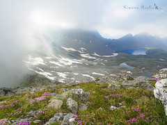 Spiragli (Simona Baglio Outdoor Photograpy) Tags: olympus em5markii lake landscape flowers nature outdoor mountain rocks grass fog snow hiking explore orobie brescia italy lombardia summer july water blue light mirrorless valley valcamonica zuiko glimmers
