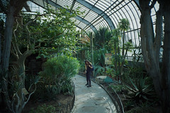 (ニノ Nino) Tags: kodak gold 200 botanical garden gardens montreal quebec canada 35mm 35 mm film analog analogue olympus mju ii stylus epic