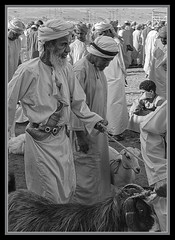"""Men of the Souk - 4 - Oman"" (flavius200) Tags: flavius200 dorking photocraft omani portrait camera club woman bedu bedouin arabia desert sand scrub mountain mono monochrome black white nikon d200 wilfred thesiger desolate isolated uae 4x4 camping alone traveller exploring tribes david harford morning evening night market souk souq knife kanjar tribesman tribe"