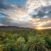 Valle del Draa illuminata al tramonto - Draa Valley at Sunset