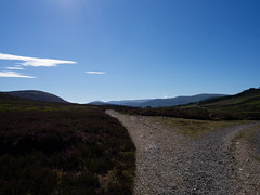 divergence (absoluteforecast) Tags: cairngorms scotland diverge split fork road landscape hills sky