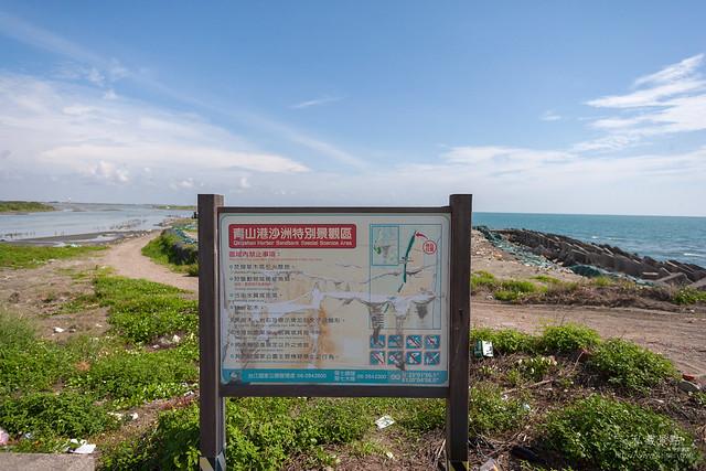 青山港沙洲 一個中年大叔的冒險 (3)