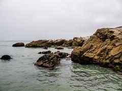 Sequit Point-5 (Webtraverser) Tags: californiacoast ocean sequitpoint tidalpools g85 lumix micro43 malibu california unitedstates us