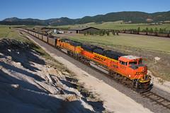 BNSF 9177 Spruce Wide 9 Jun 18 (AK Ween) Tags: bnsf bnsf9177 emd sd70ace spruce colorado jointline rampartrange train railroad
