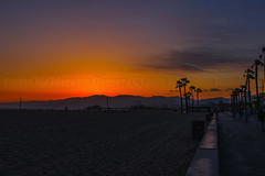 22 (morgan@morgangenser.com) Tags: sunset red orangeyellow blue pretty cloud silhouette sun evening dusk palmtrees bikepath sand beach santamonica pacificpalisades beautiful black dark cement amazing gorgeous inawe ca