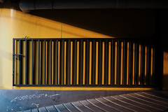 Shades of yellow (Aditya Fajar) Tags: streetphotography yellow fujifilm