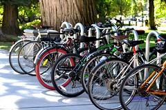 Pedal Power_3288 (2HandzUp1913) Tags: rack pedalpower bicycles sacramento statecapitol 2handzu1913 dsc3288 nikon