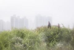 IMG_9519 (Reverei Art) Tags: city walkers fog spring buildings flowers hills leaves