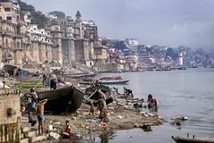 INDIA8887 (Glenn Losack, M.D.) Tags: indiapushkarphotojournalistglennlosackstreetphotographerpeoplescenicshindusanimalsmuslimsbeggingprayermelasfairsfestivalsportraitsleprosysadhusvindravanmathuravaranasikashibanarashomelessphotojournalismdeformedmasjidnewdelhi varanasi benares banaras scenics ganges glenn losack dhobi wallah streetphotographer streetphotography photojournalism