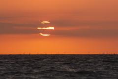 Goldene Möwe (Lilongwe2007) Tags: deutschland poel mecklenburgvorpommern strand wasser ostsee meer sonnenuntergang sonne wolken illumination wellen ozean abend nacht windkraftanlagen windräder horizont