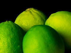 Limes (Andy Sut) Tags: fruit stilllife food raw dessert macro studio kitchen justfruitseries limes