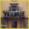 Balcone (fr@nco ... 'ntraficatu friscu! (=indaffarato)) Tags: italia italy lombardia milano milan balcone