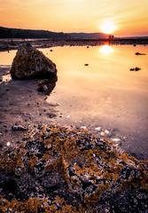 Barnacle Rock Sunset (Geoff Livingston) Tags: maine barnacles rock tidal pool water sea atlantic ocean acadia sand bar island