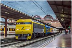 Tren de los 80 en Madrid-Chamartín (440_502) Tags: 269 604 tren de los 80 gata montés gato 6900 renfe calatayud madrid chamartín ochenta aafm aaf asociación amigos del ferrocarril