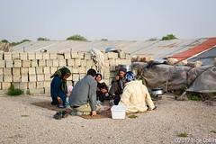 20180331-_DSC0347.jpg (drs.sarajevo) Tags: sarvestan ruraliran farsprovince nomads iran chamsatribe