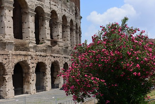 Rome, July 2018 011
