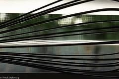 Abstract (Thad Zajdowicz) Tags: zajdowicz pasadena california macro closeup primelens 100mm canon eos 5dmarkiii 5d3 dslr digital availablelight lightroom indoor inside color light shadow abstract window screen whisk lines bokeh