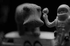 count your blessings (D.W. /.:) Tags: macromondays eraser lostinspace vwbus astronaut hippopotamus hippo artisticmacro badmonkey