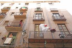 La Mujer y su Mascota Unicornio (kirstiecat) Tags: mujer woman building light apartment unicorn unicornio travle barcelona catalonia spain magicalrealism europe dreamy dream perspective
