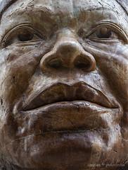 Maya Angelou (photoeclectia1) Tags: burningman renwick washingtondc museum abstract sculpture mayaangelou