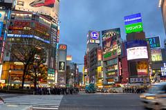 Shibuya (Gedsman) Tags: japan asia northeastasia easyasia traditional culture cultural shinto buddhist tower neon lights travel beauty architecture skyscraper shinjuku shibuya emperor asakusa temple meiji jingu photography tokyo