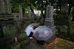 Rainy season. (Yasuyuki Oomagari) Tags: tomb grave rain rainy white parasol vinyl couple pray ancestor fujifilm xe3 fujinon xf16mmf14r japan fukuoka 日本 福岡県